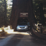 Road Trippin' (Part Two) – Day One: Washington to California